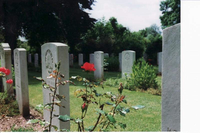 War Graves & Roses
